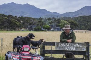 Farmer Keith with dogs